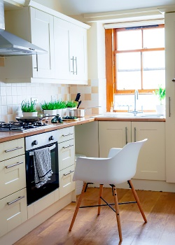 New Appliances for Kitchen Remodeling